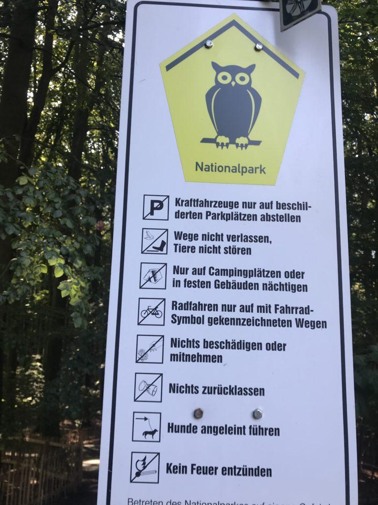 Nationalpark Jasmund - das ist bei deiner Kreidefelsen Rügen Wanderung zu beachten